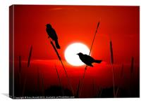 Redwing Blackbirds On Red Sunset., Canvas Print