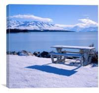 Lake Pukaki, Picnic Area with Mount Cook, Canvas Print
