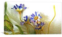 Blue silk flowers against the wall , Canvas Print