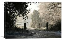 A Winters Day on Cannock Chase, Canvas Print