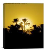 Luxor Nile Sunset, Canvas Print
