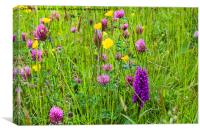 English Flower Meadow, Canvas Print