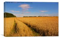 Artistic English Wheat Field, Canvas Print