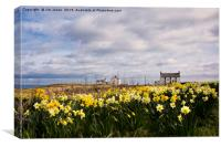 Seaton Sluice Harbour dressed for Spring, Canvas Print