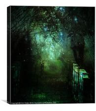 Fairy Grove, Canvas Print