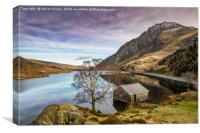 Lake and Moon Snowdonia , Canvas Print