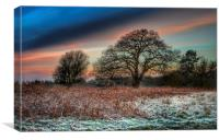 A frosty morning in Norfolk, Canvas Print