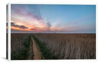 Lingering colours of sunset at Thornham, Canvas Print