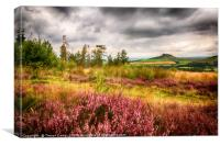 Roseberry Topping - 03, Canvas Print