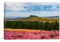 Roseberry Topping - ...Roseberry and Pines, Canvas Print
