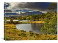 Tarn Hows, Lake District, Cumbria, Canvas Print