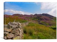 High Crag and Willygrass Gill above Stonethwaite i, Canvas Print