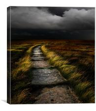 The Path, Canvas Print
