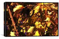 Brown and yellow Leafs, Canvas Print
