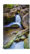 Burbage Brook Reworked, Canvas Print
