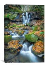Autumnal Wharnley Burn Waterfall , Canvas Print