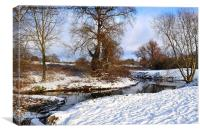 Bocking river in Winter, Canvas Print