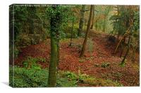 Forest of Dean, Canvas Print