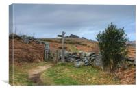 The Path to Hound Tor, Canvas Print