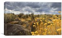 Oregon High Desert Vista, Canvas Print