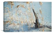 Driftwood Abstract, Canvas Print