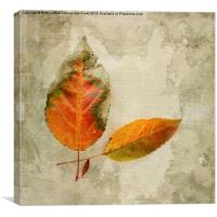 A Touch of Autumn #1, Canvas Print