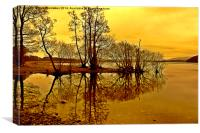 Winter Reflections., Canvas Print