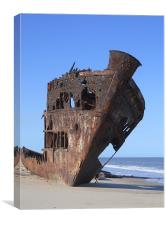 Ship Wreck., Canvas Print