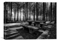 Stover Country Park in Black and White, Canvas Print