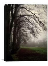 moody day, Canvas Print