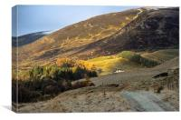 Autumn at Spittal of Glenshee, Canvas Print