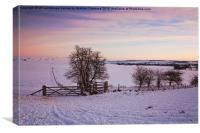 Winter in the Chilterns, Canvas Print