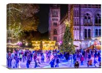Natural History Museum Skaters, Canvas Print