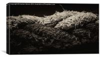 Twisted rope, Canvas Print