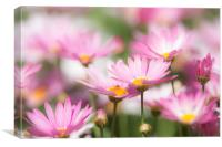 Blooming paradise, Canvas Print