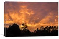 Sunset Over Catton Park Norwich, Canvas Print