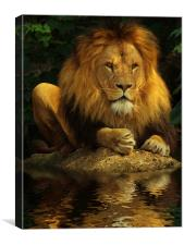 The Lion King, Canvas Print