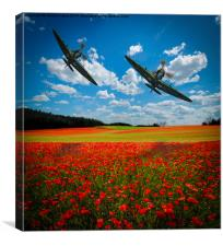 Spitfires Tribute Poppy Flypast Oil Painting, Canvas Print