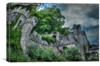 Gwrych Castle Collection 29, Canvas Print