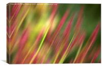 Pink and green floral, Canvas Print