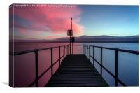 Pink or blue?, Canvas Print