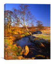 Burbage Brook Longshaw Estate, Canvas Print