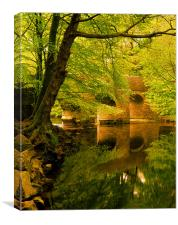 River Plym at Plymbridge,Devon, Canvas Print