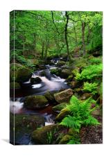 Padley Gorge Waterfalls, Canvas Print