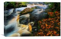 River Rivelin Waterfalls, Canvas Print