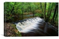 Rivelin Falls, Canvas Print