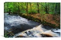 Roscoe Weir, Rivelin, Canvas Print