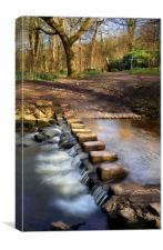 Porter Brook Stepping Stones & Falls, Canvas Print
