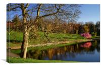 Crookes Valley Park in Spring, Canvas Print