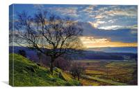 Longshaw Estate Sunset, Canvas Print